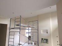 Professional painter and drywall taper available short notice