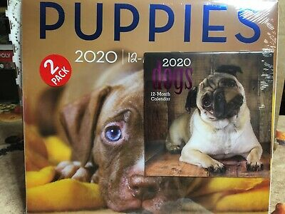 2020 Calendar PUPPIES 12 x 11  Wall Calendar & DOGS Mini 6 x 6--2 Pack-fREE ShIP Puppies Wall Calendar