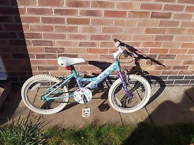 Girls 18* wheeled Bike