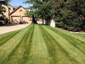 2017 Lawn Services