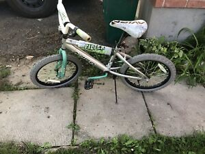 3 bikes working for 65$ for all