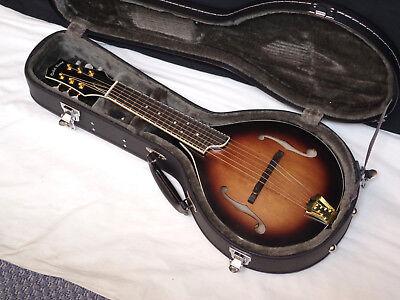 GOLD TONE GM-6+ 6-string electric mandolin GUITAR new w/ HARD CASE - B-stock
