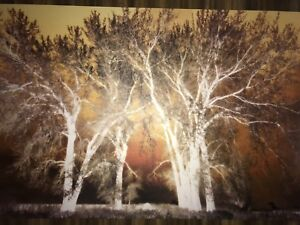 Beautiful 6ft by 4ft Canvas Art