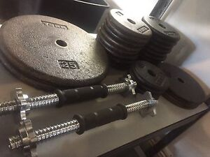 Good quality 160 LBS  - metal weights