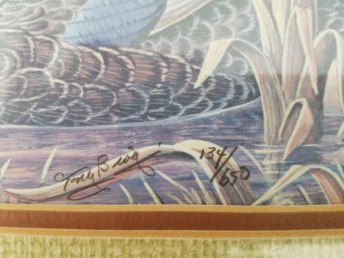 Tony Biagi Original Art Print 134 Of 650 Black Ducks, Beautifully Framed - $145.00