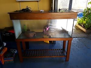 Reptile snake enclosure tank / terrarium Woolloongabba Brisbane South West Preview
