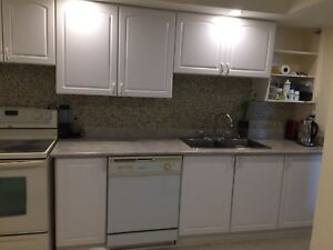 Kitchen Cabinet, sink, faucet and counter