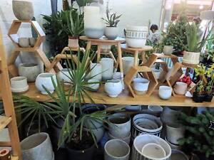 25/11/17 Indoor Plant Sale Event at Queen Victoria Market