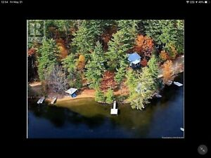 Cottage south of Algonquin Park, 10 days July 4 to 14th, $3200