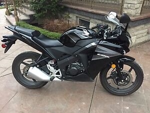CBR125R SHOWROOM CONDITION