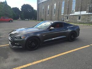 Mustang GT 2015 premium performance (track) pack