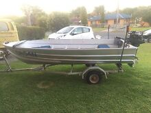 12ft Tinny with 20hp Johnson Outboard. Cessnock Cessnock Area Preview