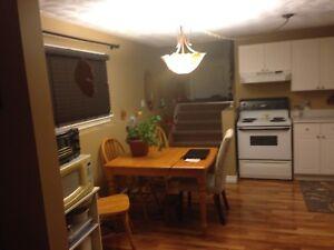 Cozy one bedroom apartment