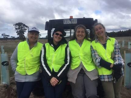 ballarat volunteers gong gong reservoir kirks park