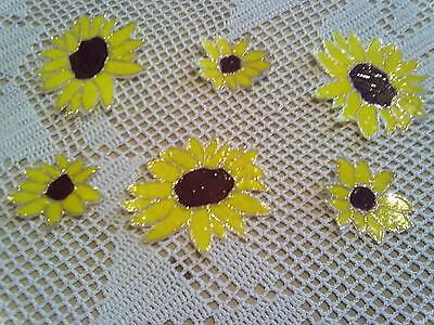 Window Color Bild Sonnenblumen Blüten