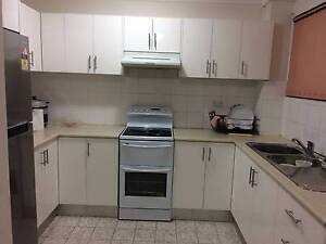 Shared accommodation available for rent in Parramatta ($180/week) Parramatta Parramatta Area Preview
