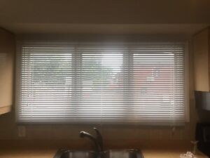 Horizontal Blinds for Sale