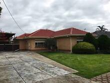 4 Curbur avenue Pooraka SA 5095 Pooraka Salisbury Area Preview