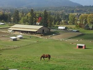 Brookside Stables Salmon Arm