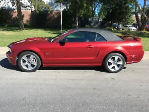 2007 Convertible Mustang GT Prestine LOW km Must See