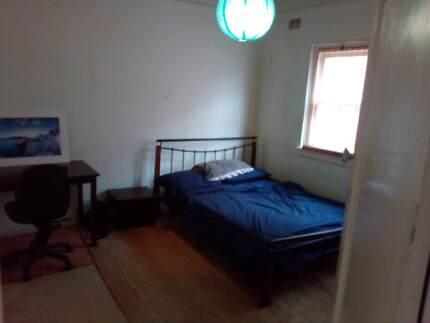 Room for rent bondi beach