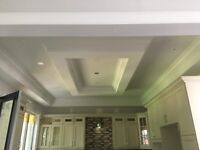 Crown moulding, wainscoting, doors, baseboard, casings