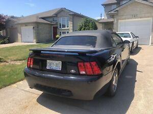 2002 mustang convertible v6 1500$ OBO
