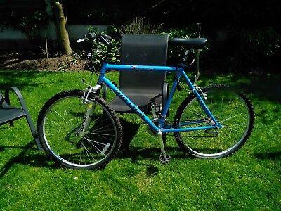 Man's Raleigh Bike Used