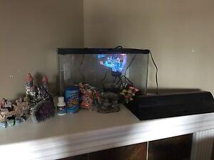 10 gallon fish tank w/ filter and accessories