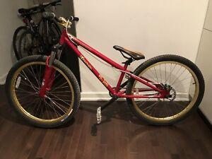 Dirt jump bicycle (bmx)