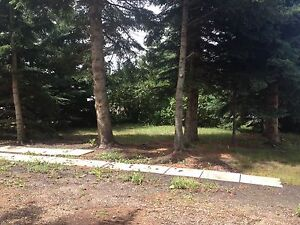"""Secluded mobile home """"lot for rent"""" in Willingdon, Ab"""