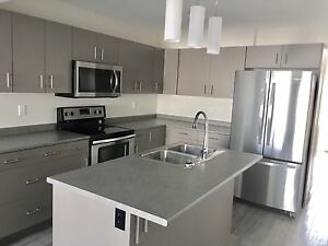 Brand New Immaculate 3 Bdrm Main & 2nd Storey - North Park