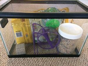 5 gallon tank aquarium terrarium  **REDUCED PRICE**