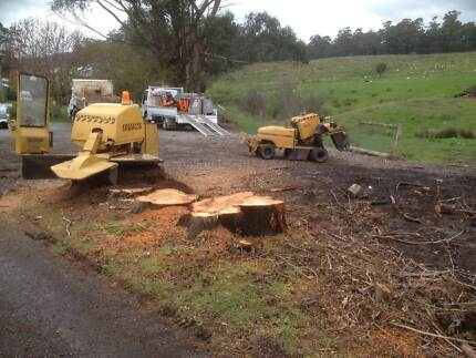Stump Grinding Competitive Rates & Free Quotes