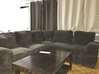 Very beautiful comfy and clean sofa!! Price is negotiable!!