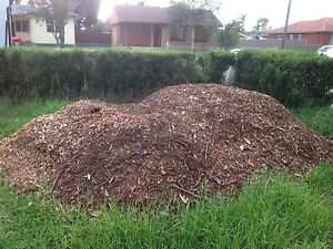 FREE Mulch to be collected ASAP Lurnea Liverpool Area Preview