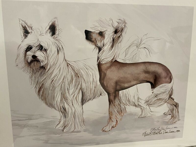 Chinese Crested Ltd Ed 11x14 Signed Print By Van Loan