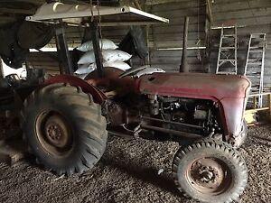 Tractor - Massey Ferguson 35X Alstonville Ballina Area Preview