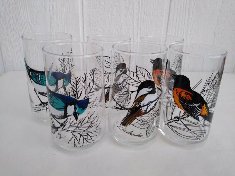 Retro  Blue Jay Chickadee Baltimore Orioles Retro Bird Glasses Set 6 Swanky Swig