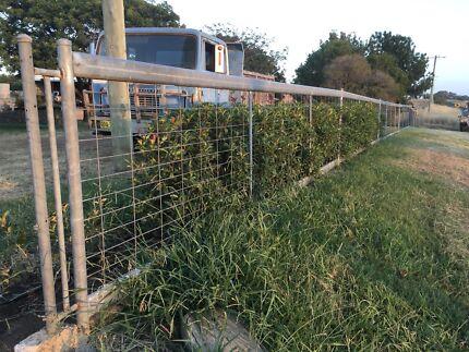 Steel yard fence- $300