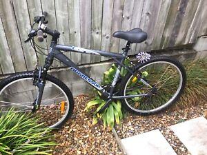 Mountain bike, GT