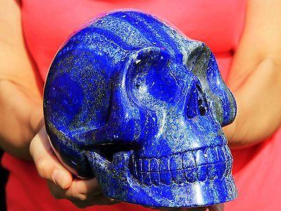 "9.6 lb 7.5"" Gem Lapis Skull! SK202"