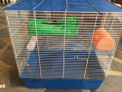 Rat cage Greenhill Adelaide Hills Preview