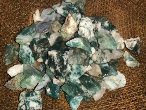 500 Carat Lots of (SMALL) Green Tree Agate Rough - Plus a FREE Faceted Gemstone