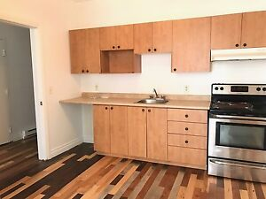 Big 1100sqft 4 1/2 + den in downtown saint henri /antoine bright