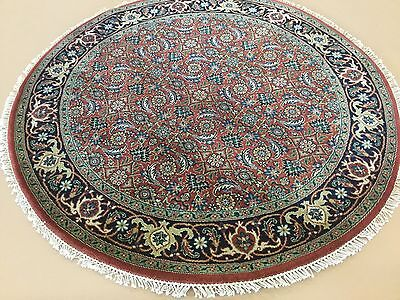 4 X 4 Round Rust Navy Blue Super Herati Persian Oriental Area Rug Hand Knotted