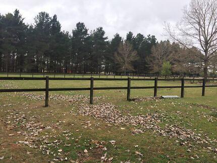 New England - prime 40 acres + home + building entitlement
