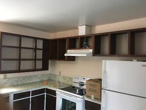 Pine Kitchen cupboards and range hood