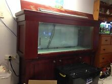 5x2x1.5 foot fish tank for sale Burpengary Caboolture Area Preview