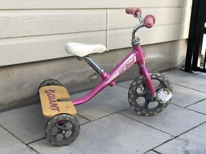 Tricycle Giant Rose